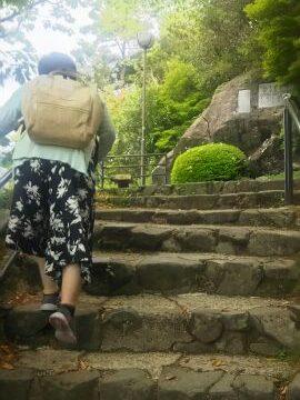 皿倉山、登りました!